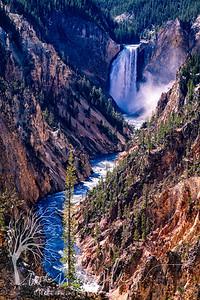 wlc Yellowstone 0919 1382019