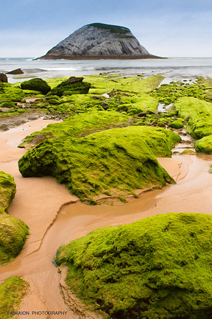 "The Green Coast. Beach of Covachos - Piélagos. Cantabria (Spain). This area of ​​the north coast of the Iberian Peninsula is full of wonders and surprises. Not only geological (it is known for its flyschs and fossils), but also for simple but beautiful details like these sets of ""green"" stones (covered with thin algae) that contrast with the blues of the sea and sky and the ocher of the beach sand. Here you feel like on another planet."