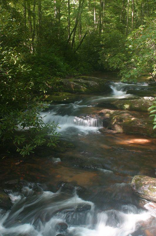 Wildcat Creek in North Georgia