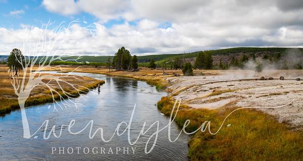 wlc Yellowstone 0919 5812019