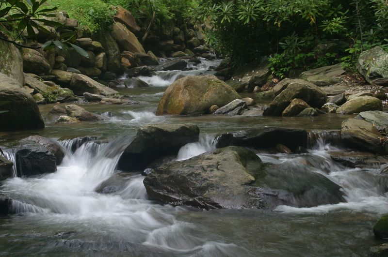 The stream about 1/2 mile above Lake Susan in Montreat, NC.