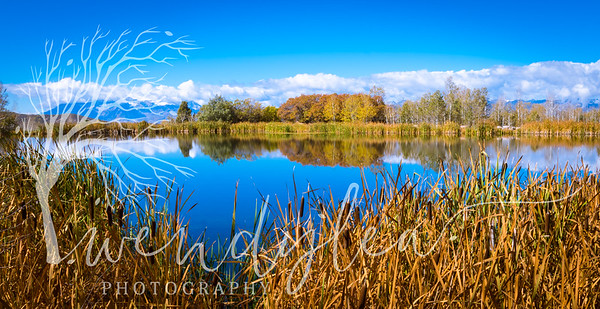 wlc Pond LCOctober 06, 2016-5-Edit