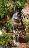 A small water fall near Narada falls in Mt Rainier National Park.