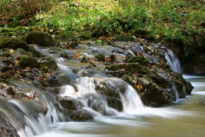 Birch Creek, Glen Helen Nature Preserve, Yellow Springs, OH