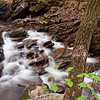 Spring arrives at Senter Falls, Mont Vernon, NH - both the water and the branches were moving in this 5 second exposure.