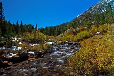 Scenic view of Sierra Nevada Mountain Range fall foliage landscape.
