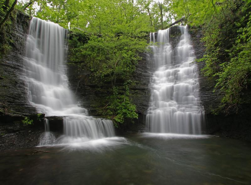 Wildman Twin Falls
