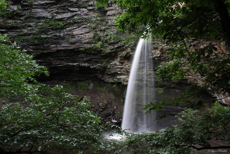 Cedar  Falls, Petit Jean State Pak, Arkansas
