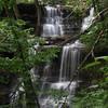 Lichen Falls, Ozark National Forest, Arkansas