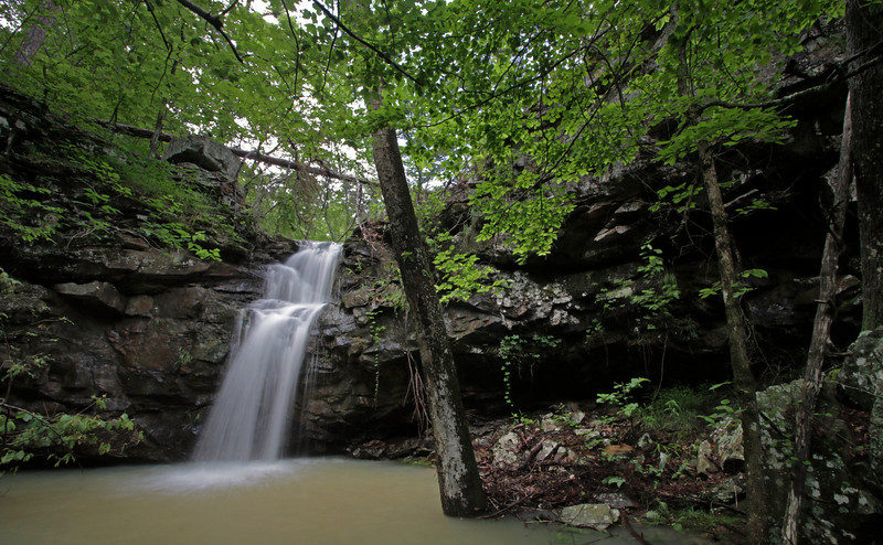 Upper Mitchell Branch Falls