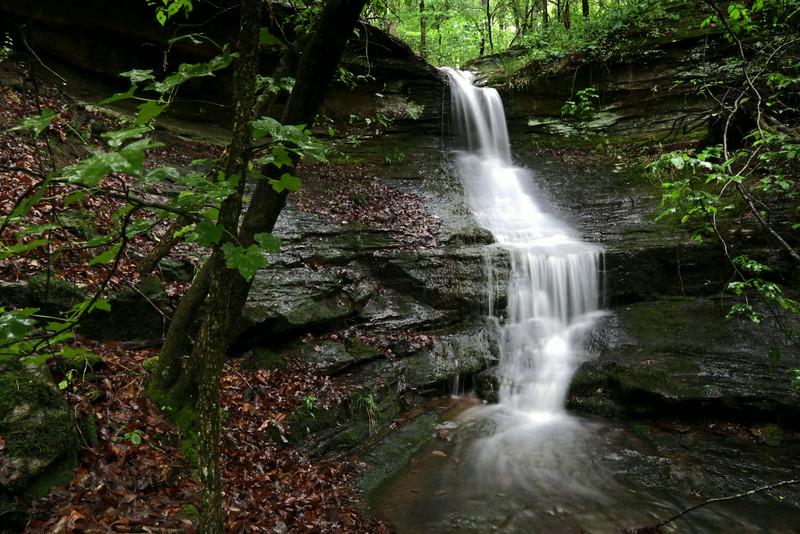 Upper Pig Trail Falls