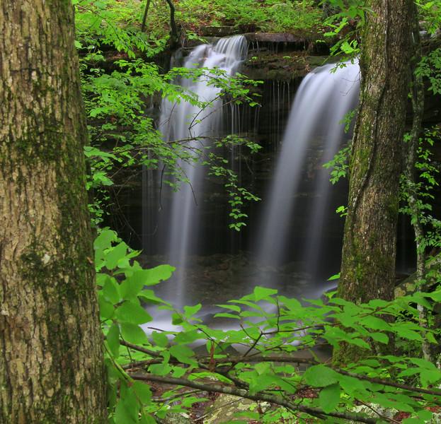 Tinker Bell Falls, Gulf Mountain WMA, Arkansas