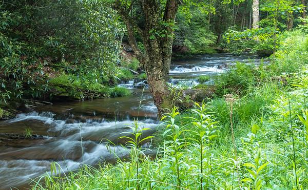 Seneca Creek Cascades