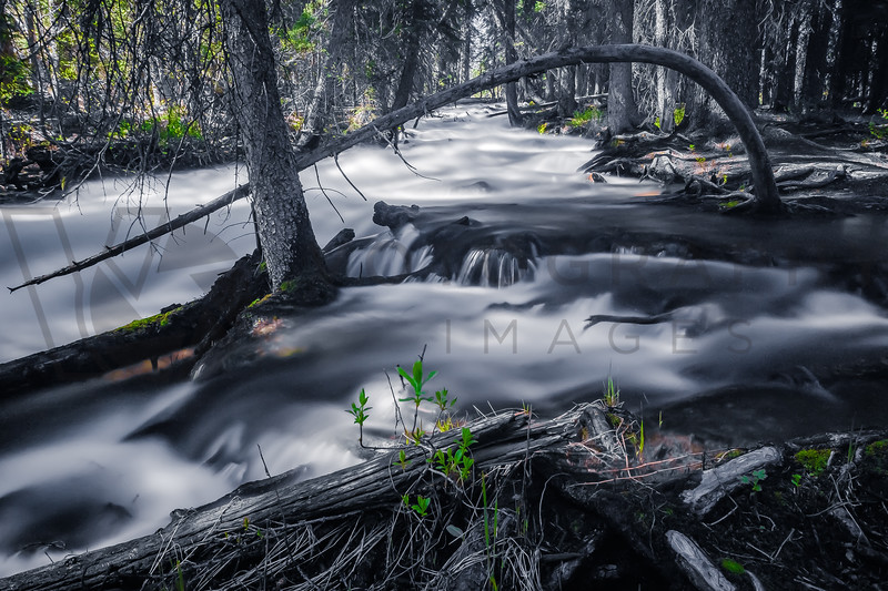 Redfish Lake Creek - Sawtooth Mountains Spring Run Off, Idaho