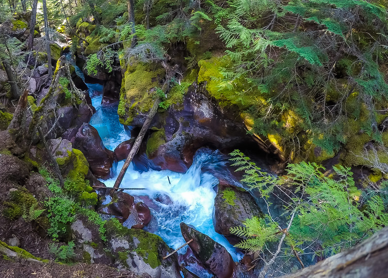 Roaring Avalanche Creek, Glacier National Park, Montana