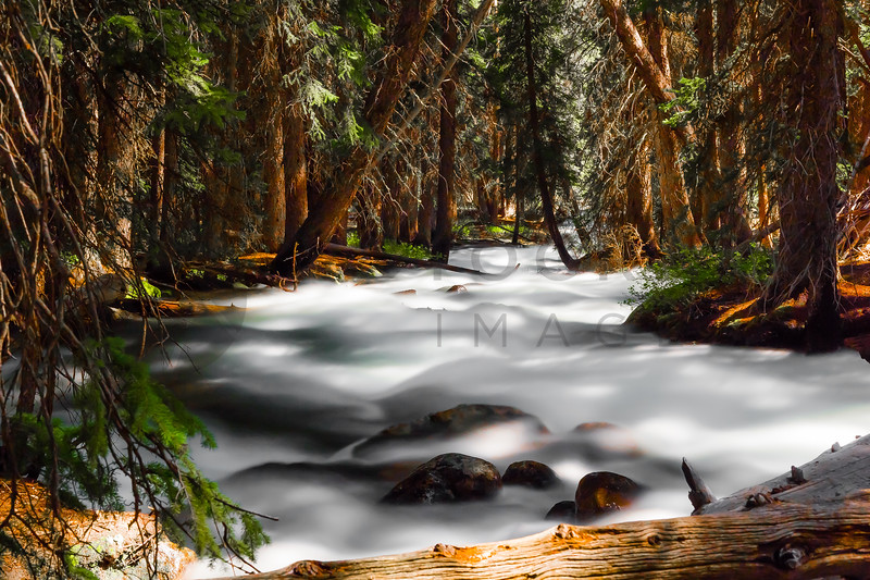 Major Spring Run-Off in Redfish Lake Creek, Sawtooth Mountains, Idaho