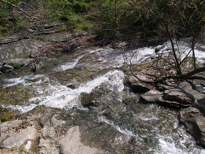 Tanyard Creek 1 (18)