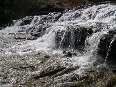 Tanyard Creek 1 (20)