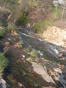Tanyard Creek Water fall (10)