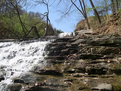 Tanyard Creek 1 (22)