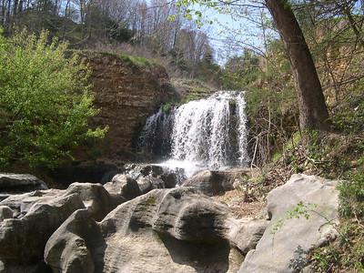 Tanyard Creek 1 (17)