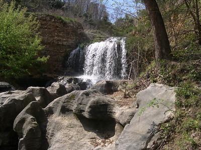 Tanyard Creek 1 (16)