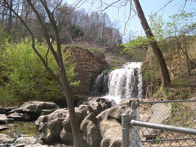 Tanyard Creek 1 (24)