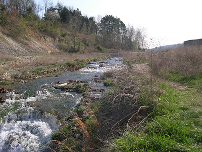Tanyard Creek Water fall (9)