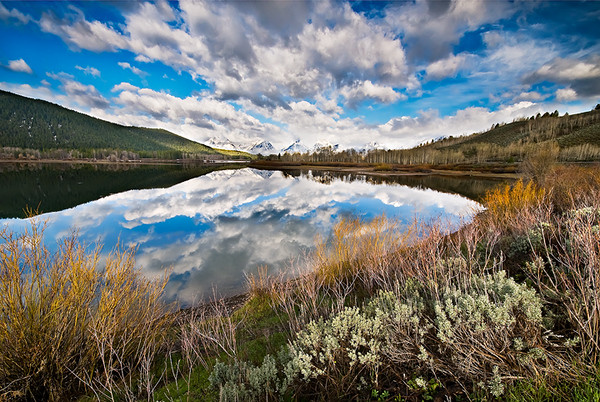 Oxbow Bend Reflections web