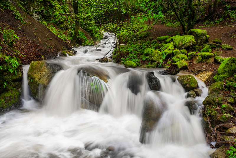 """Spring Waterfalls in the San Francisco Bay Area"" Uvas Canyon Creek County Park in Spring, San Francisco Bay Area.  D813082"