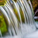 Fern Springs Flowing Vertical D817965