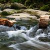 2 Logs at Erskine Falls