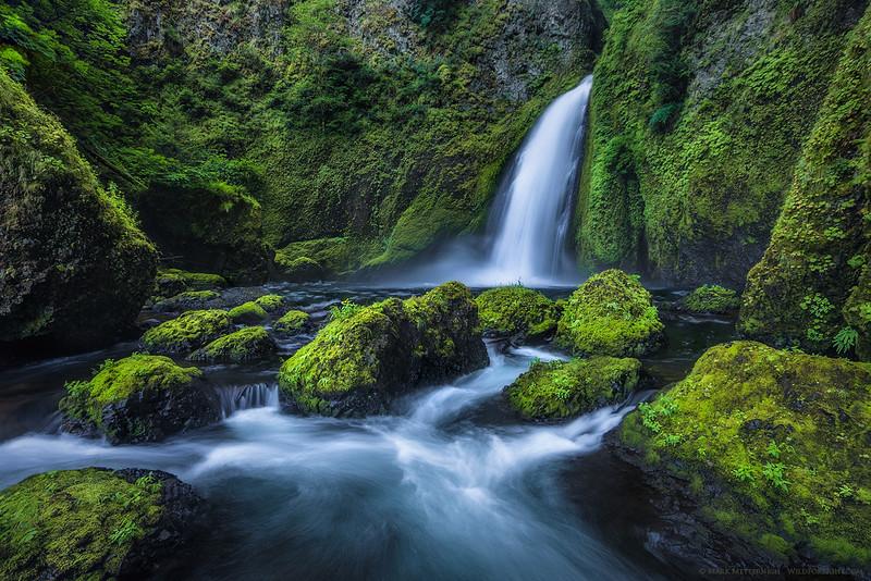 Wahclella Wonder - Oregon