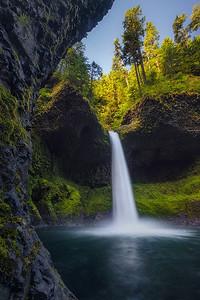 Metlako's Glory - Oregon