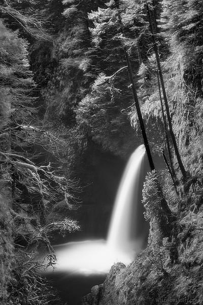 """""""Dreamy Morning at Metlako""""  - Oregon"""