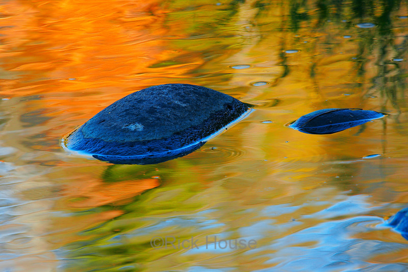 Jay Cooke Minnesota State Park October 2004