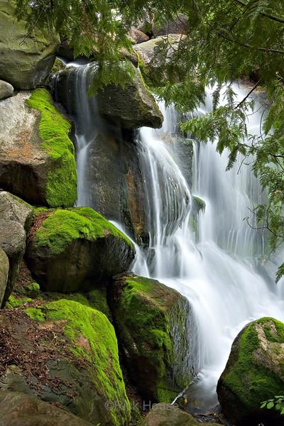 Minnesota Landscape Arboretum 2006