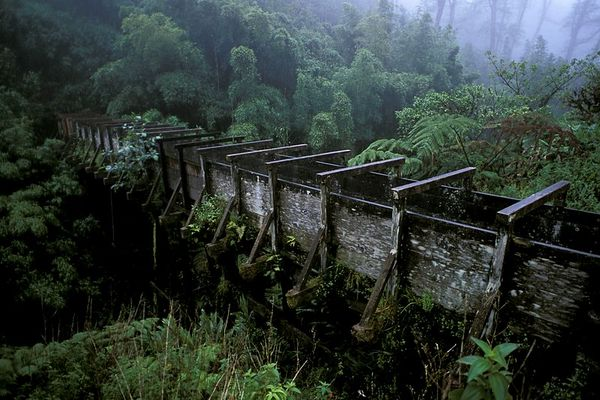 irrigation ditch in Waimea built to supply water to sugar cane crops along the Hamakua coast, Hawaii<br /> ( Central Pacific Ocean )<br /> 1