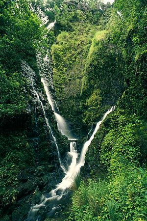 small waterfall along trail in Pololu <br /> Valley, Big Island of Hawaii,<br /> ( Central Pacific Ocean )<br /> 1