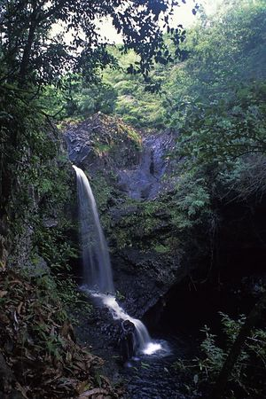 small waterfall in Hana, Maui, Hawaii,<br /> ( Central Pacific Ocean )<br /> 1