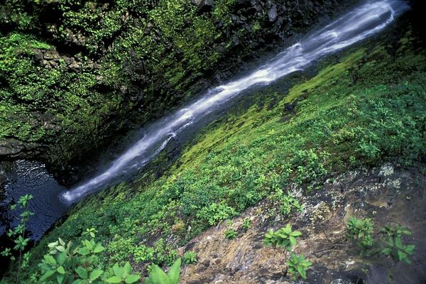 Kapoloa Falls Is Approximately 500 Feet High This Photo Only Shows The Bottom 200