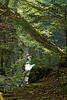 Terrill Gorge, Vermont