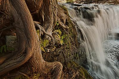Jones Falls.