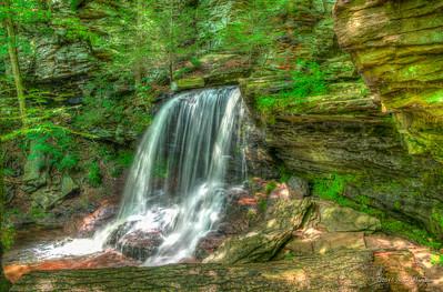 B. Reynolds Falls 40'