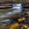 A waterfall on Barren Branch