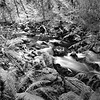 Rocky Brook  II