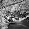 Rocky Brook  I