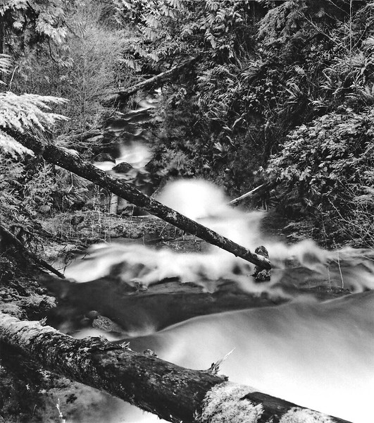 Gatton Creek Cascade