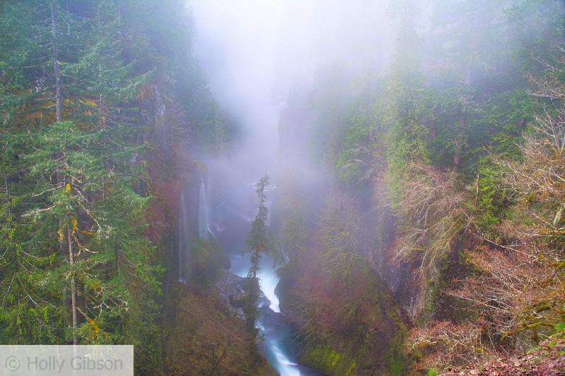 View along Eagle Creek Trail