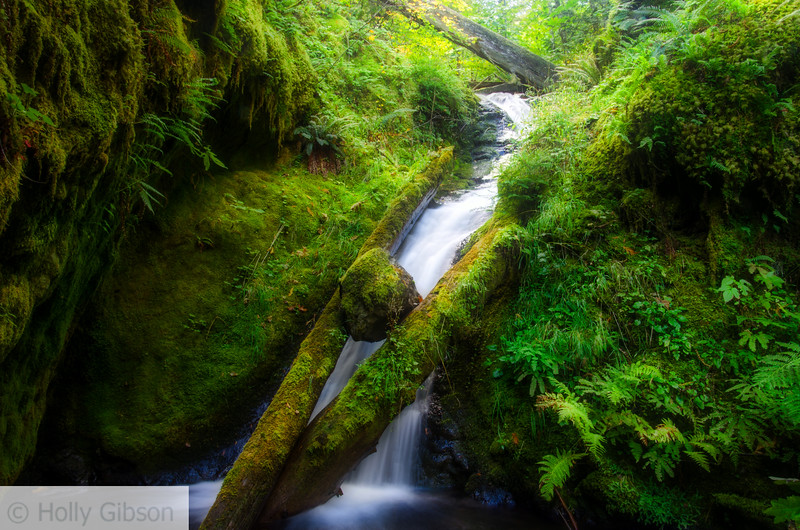Hidden waterfall - Columbia River Gorge